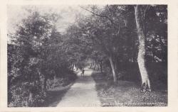 640  -  The Lovers Walk, Southampton