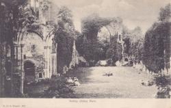 668  -  Netley Abbey Nave