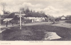 794  -  Cadnam, New Forest