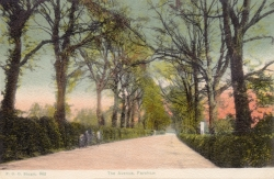 963  -  The Avenue, Fareham