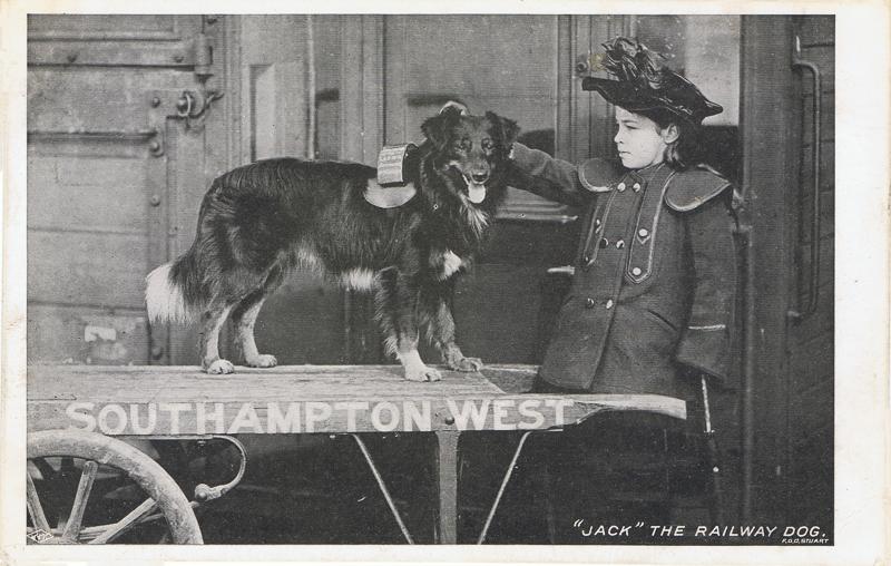 """Jack"" The Railway Dog"